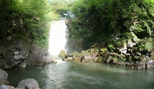nasonotaki_p1.jpg