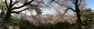 nisiyamakouen_hukui_p8.jpg