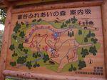 tomiyayayama_map.jpg